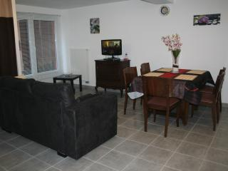 Nice Condo with Internet Access and Central Heating - Kintzheim vacation rentals