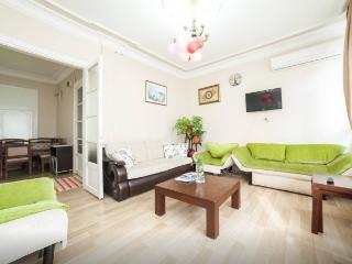 3BR+ 2WC- Cozy APT next 2d Blue Mosque - Istanbul vacation rentals