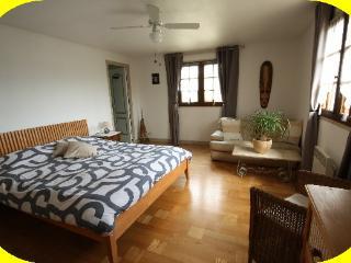 SANTAL-HÖTE double B&B-22m²-Bain-tv-wifi-pk-salon - Mougins vacation rentals