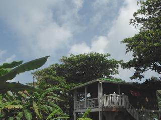 Treehouse Overlooking  Beach - Corn Islands vacation rentals