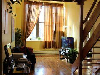 Penthouse, Condo 3BR 2 Bath, Duplex, Sleeps 10 - Brooklyn vacation rentals