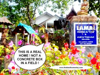 THE BEST OF AUTHENTIC MASS TOURISM FREE THAILAND. - Khon Kaen vacation rentals