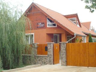 Nice Villa with Internet Access and Balcony - Miercurea-Ciuc vacation rentals