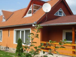 Nice Villa with Internet Access and Parking Space - Miercurea-Ciuc vacation rentals