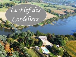 Le Fief des Cordeliers - Gite and Bed-and-Breakfast in Loire Valley - Montjean-sur-Loire vacation rentals