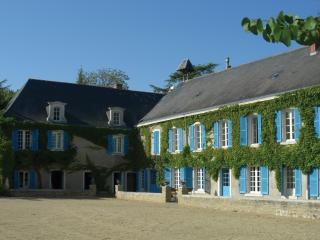 Le Fief des Cordeliers B&B Loire Valley panorama - Montjean-sur-Loire vacation rentals