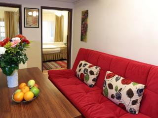 2Bed Room Apt behind  BlueMosq - Istanbul vacation rentals