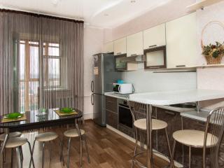 Апартаменты на 14 этаже - Kazan vacation rentals