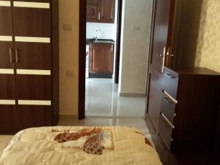 Super Deluxe Furnished Studio Apartment w Balcony. - Al Jubaihah vacation rentals