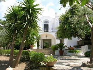 Villa Ferrari - Capri vacation rentals