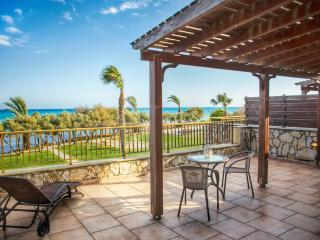 Beach Houses Right on the Beach - Agios Theodoros vacation rentals
