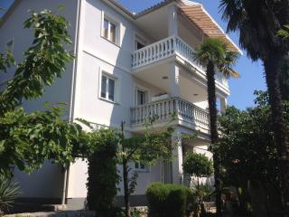 APARTMENTS BISTROVIC, Opatija, pearl of Croatian t - Opatija vacation rentals