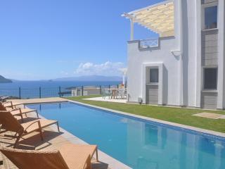 Villa Andrew - Turgutreis vacation rentals