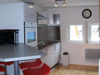1 bedroom Apartment with Internet Access in Sainte-Croix-en-Plaine - Sainte-Croix-en-Plaine vacation rentals