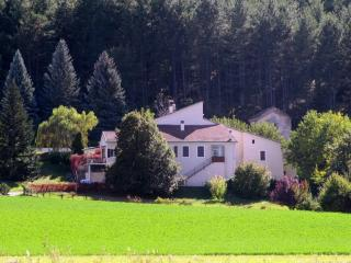 Country Cottage / Gite - Upaix - Upaix vacation rentals