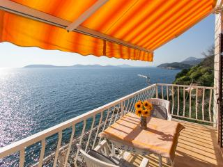 Apartments Neve - Two-Bedroom Apartment with Balcony and Sea View - Lozica vacation rentals