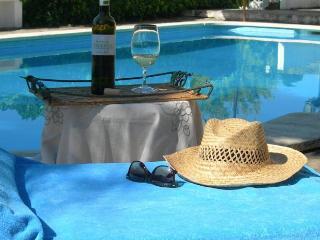Quinta da Padrela Winery House - Tabuaco vacation rentals