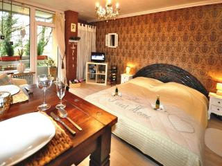 Charming Condo with Balcony and Central Heating - Bad Harzburg vacation rentals
