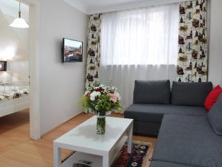 No distance 2d BlueMos, HagiaSophia & Center! - Istanbul vacation rentals
