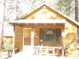 Nice Cabin with Central Heating and Mountain Views - Tierra Amarilla vacation rentals