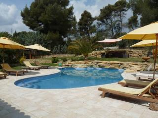 Nice Villa with Internet Access and Dishwasher - Le Castellet vacation rentals