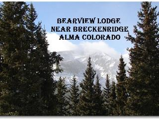Comfortable 4 bedroom Lodge in Alma - Alma vacation rentals