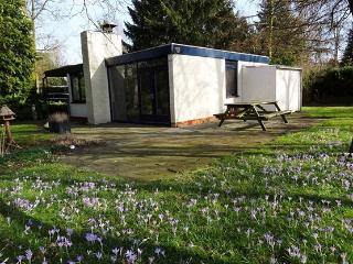 For those who love peace and quiet; in Drenthe - Eext vacation rentals