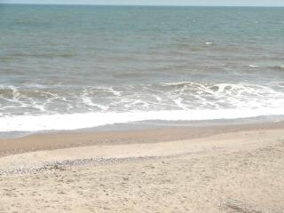 "122 Palmetto Blvd - ""Our Place"" - Edisto Beach vacation rentals"