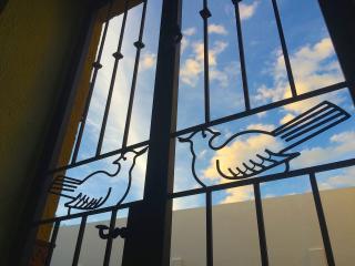 Nido de Pájaros: airy birds nest in San Antonio - San Miguel de Allende vacation rentals