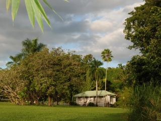 Beautiful Cottage with Internet Access and Dishwasher - Keaau vacation rentals