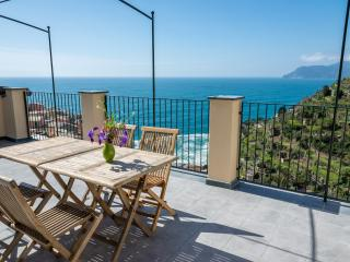 Nice House with Internet Access and A/C - Manarola vacation rentals