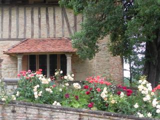 Gite de charme. Château d'Espanel en Quercy - Molieres vacation rentals