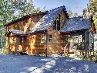 Beautiful 3 bedroom Cabin in Cherry Log - Cherry Log vacation rentals