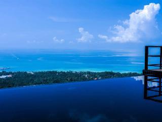 1br villa with big private swimmingpool - Surat Thani Province vacation rentals