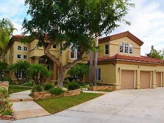 Beautiful Upscale Encinitas, CA Residential Rental (Olivenhain) - Encinitas vacation rentals