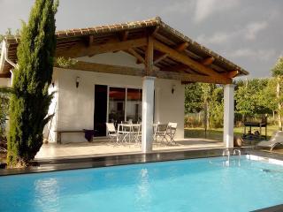 villa privée dans environnement arboré - Breuillet vacation rentals