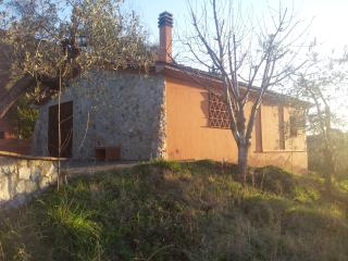 Casa agricola immersa tra gli olivi fronte mare. - Riparbella vacation rentals