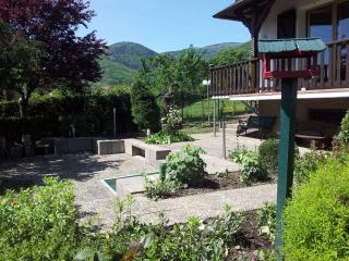 Exclusive quiet and spacious summer cottage Gîte B - Breitenbach (Bas-Rhin) vacation rentals