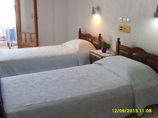 THENDRAKI KOALA HOTEL - Mountain View Room - Votsalakia vacation rentals