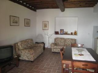 Appartamento in tipico casolare toscano immerso ne - Camaiore vacation rentals