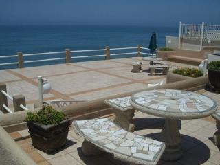 Oceanfront Privacy - Amazing Feel! - Dillon vacation rentals