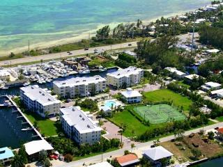 Beautiful Condo with Internet Access and Dishwasher - Long Key vacation rentals