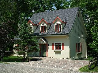 Scenic Mountain Views  - Beautiful Home Perfect for large Gatherings (6062) - Mont Tremblant vacation rentals