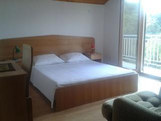 3 bedroom Apartment with Television in Veli rat - Veli rat vacation rentals