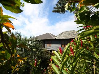 The Pod House with marble pool, complete privacy - Savusavu vacation rentals