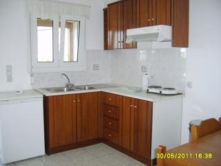 THENDRAKI KOALA: First Floor Family Apartment No.6 - Votsalakia vacation rentals