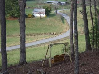 Awesome Mountain Views and Fully Stocked, Close to Nature - Blairsville vacation rentals