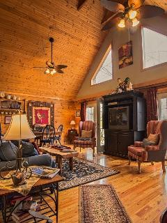 COMFY CABIN (less than 3 miles from TIEC) - Tryon vacation rentals
