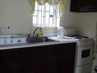 Charming Condo with A/C and Satellite Or Cable TV in Kingston - Kingston vacation rentals
