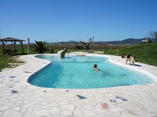 Cozy 2 bedroom Canino Apartment with Deck - Canino vacation rentals